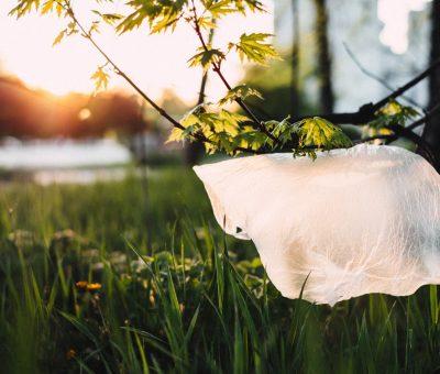 »  España. Nueva normativa para la reducción del consumo de bolsas de plástico.
