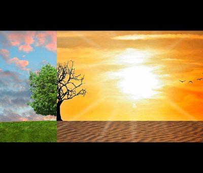 »  Consulta pública. Marco Estratégico de Energía y Clima