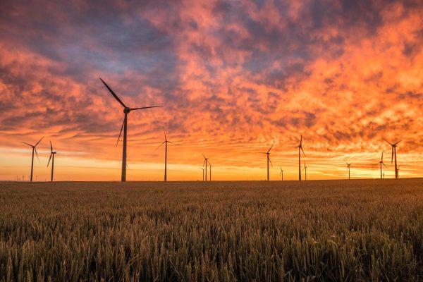»  Catalunya. Publicat el nou decret llei de mesures urgents per a l'emergència climàtica i l'impuls a les energies renovables.