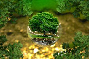 » La Llei de Canvi Climàtic i Transició Energètica a la recta final de la seva tramitació administrativa