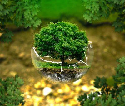 » La Ley de Cambio Climático y Transición Energética en la recta final de su tramitación administrativa.