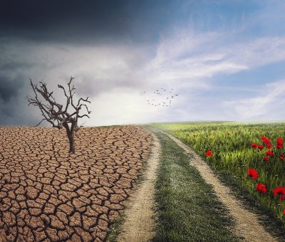 » Consulta pública: esborrany del Pla Nacional d'Adaptació a el Canvi Climàtic 2021-2030